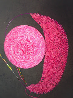 Color Affection Shawl from Bliss Yarns - Day 1 8