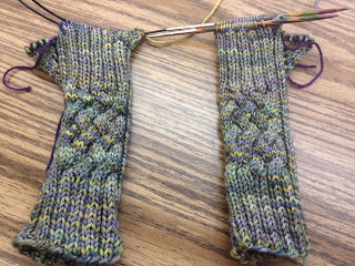 Hiawassee Handwarmers from The Needle Nook - Day 4 6