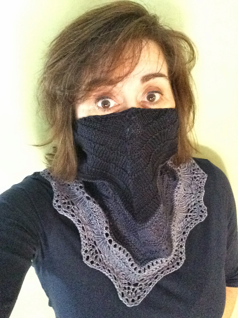 Brush Creek Cowlette from The Knitting Nest - Done! 11