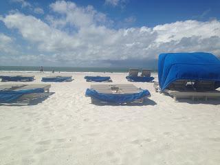 TAMPA BAY, FL 40
