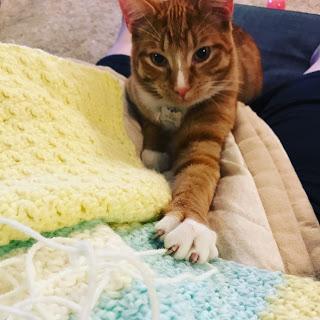 April Reader Who Crochets--Lisa Leoni 14